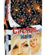 cactus-rain